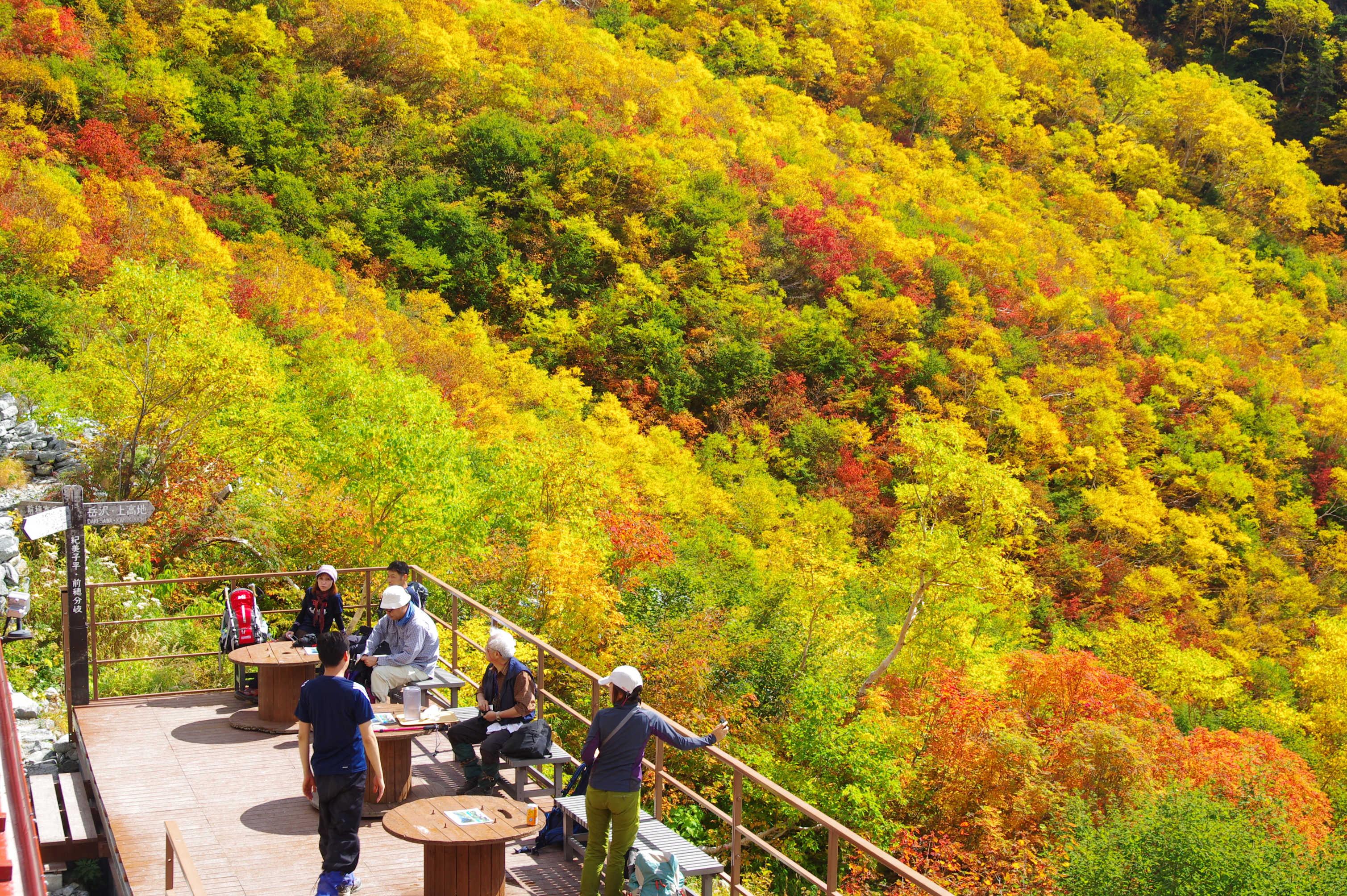 岳沢の紅葉・黄葉